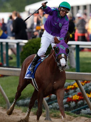 May 17, 2014; Baltimore, MD, USA; Victor Espinoza aboard California Chrome celebrates winning the 139th Preakness Stakesat Pimlico Race Course. Mandatory Credit: Winslow Townson-USA TODAY Sports