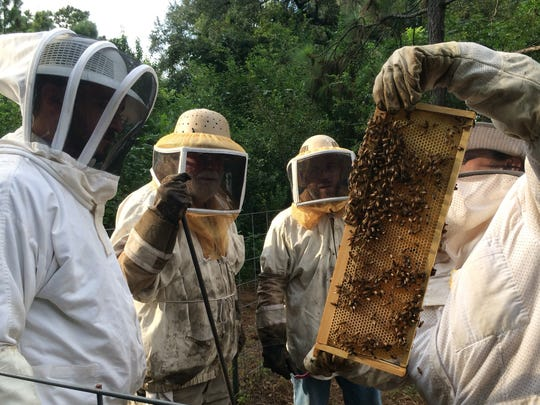 When starting beekeeping, a bee suit, complete with hood and gloves, is a great investment.