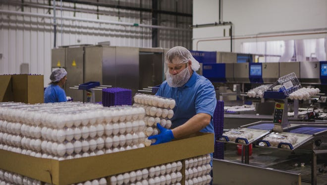 Montana Egg recently opened a new $7 million processing plant in Great Falls.