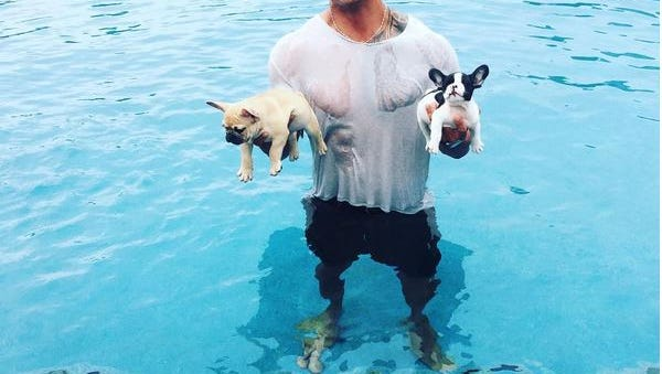 The Rock with his puppies.