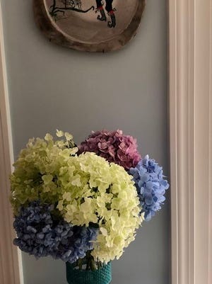 The Duxbury Senior Center and Community Garden Club of Duxbury prepared and gave out 90 free hydrangea bouquets this year.