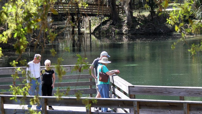 A group of visiters check out the spring run from a dock at Gemini Springs, a Volusia County park in DeBary in this file photo. The county announced Friday that campsites at the county parks like this one will open to 100% capacity on Monday.