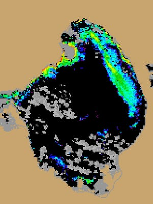 NOAA satellite image from Aug. 2 shows algae bloom covering about 17 percent of Lake Okeechobee's open-water area.