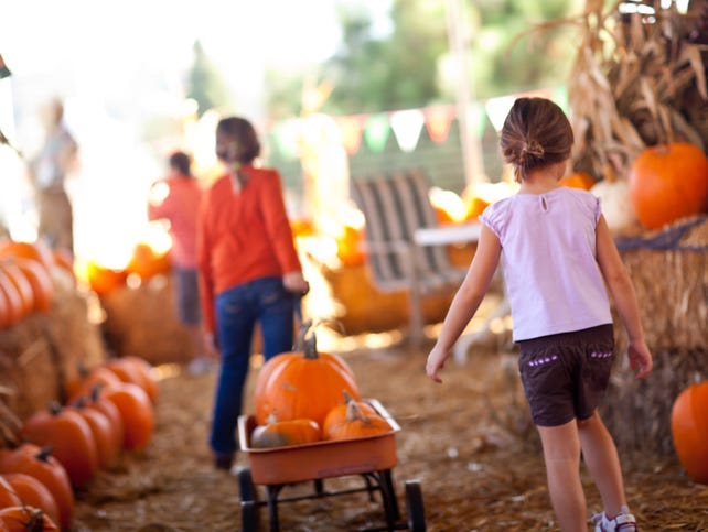 Enjoy corn mazes, pumpkin patches and more. Win a $100 gift card for your next fall adventure. Enter 10/1-10/22