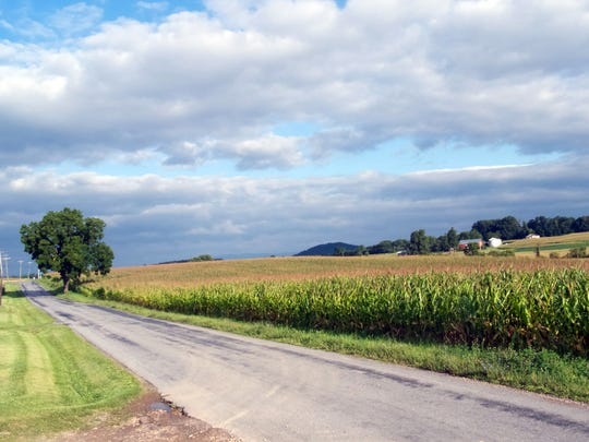 This Farmland along Hall School Road near Patton Farm Road in Stuarts Draft is designated on the latest Dominion map as an alternative route for their natural gas pipeline. The photo was taken August 13, 2014.