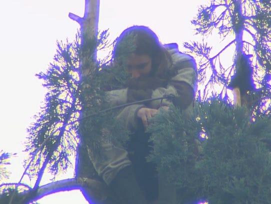 """Man in Tree,"" identified as Cody Lee Miller, 28, came"