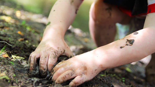 The dirty hands of a little boy child are digging in the wet mud outside by the river.
