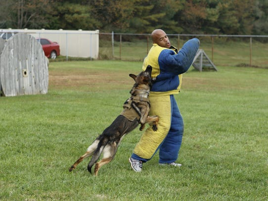 Many Delaware K9 units recently received national certifications