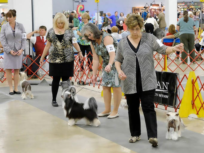 Piedmont Kennel Club Dog Show