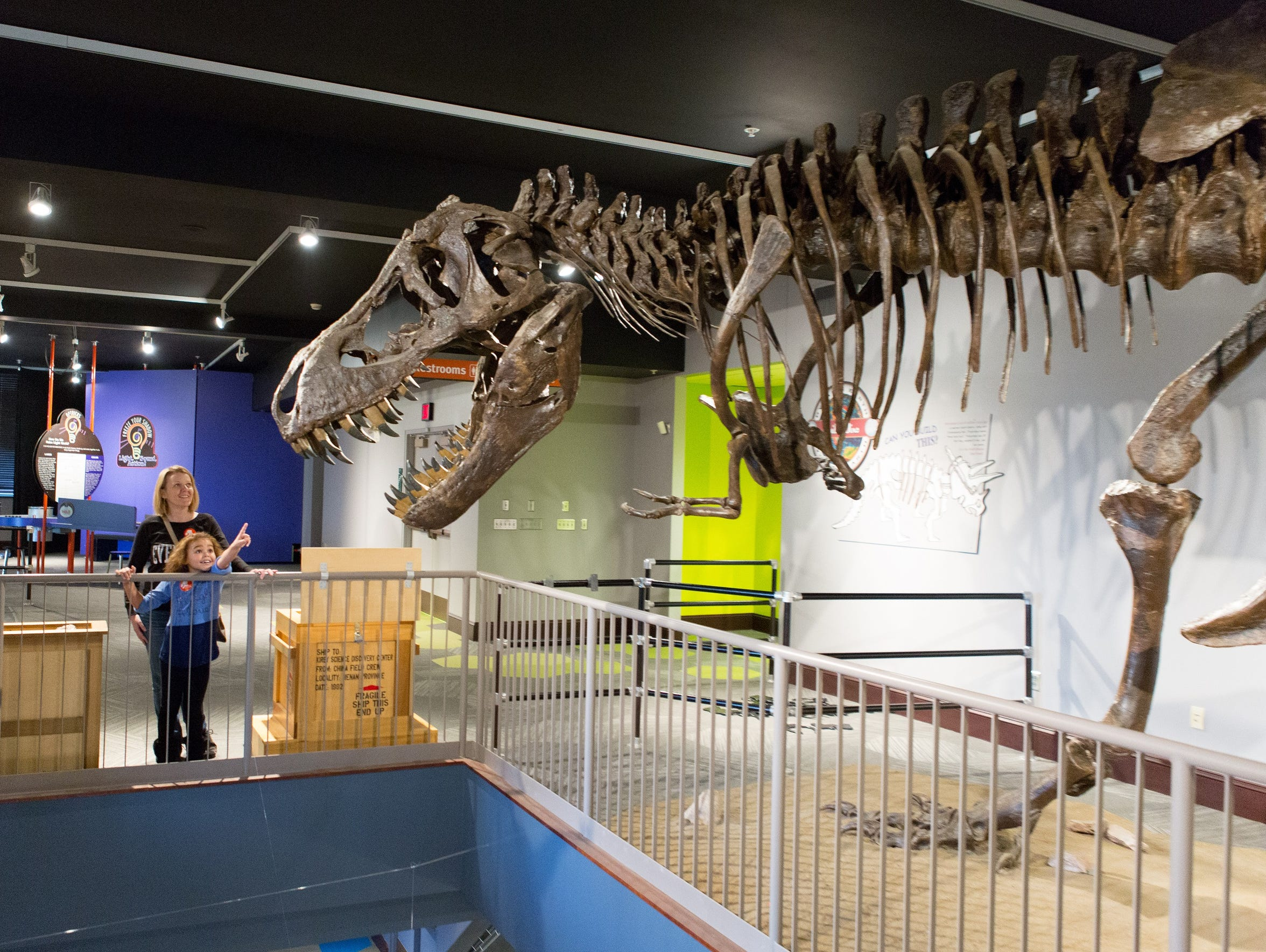 Stan, the T-Rex, in the Kirby Science Discovery Center