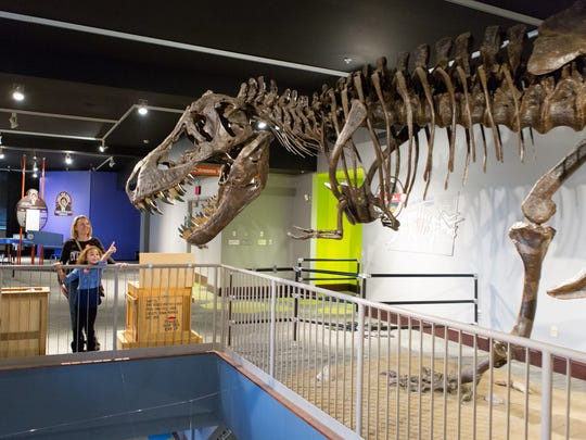 Stan, the T-Rex, in the Kirby Science Discovery Center at the Washington Pavilion.
