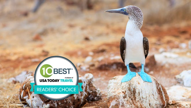 """The Galapagos Islands were voted the """"best bucket list trip"""" in 10Best.com's Readers Choice contest."""