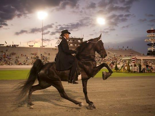 walkinghorse.jpg