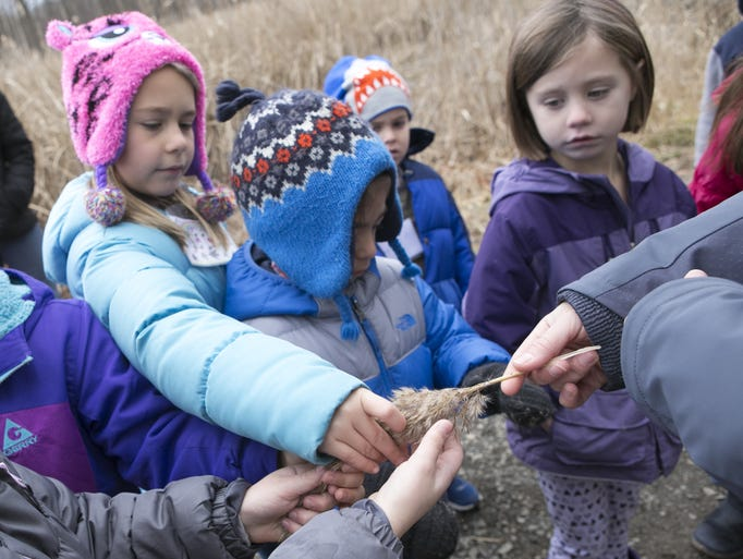 """The Great Swamp Outdoor Education Center hosts """"Wild"""
