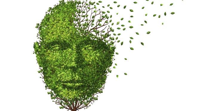 Activities to keep your brain fresh