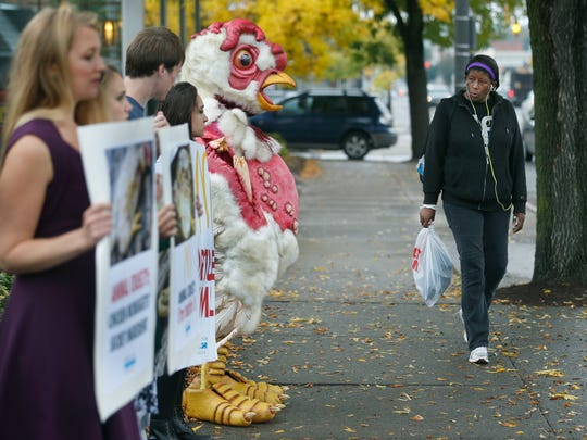 """Lillie Jackson of Rochester glances at Noah Church of Portland, Oregon, with Mercy For Animals, in the """"Abby the Abused Chicken"""" costume. Protesters stood in front of the Monroe Avenue McDonald's for an hour on Friday."""