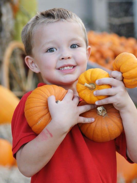 Armload of Pumpkins