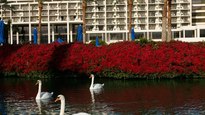 The JW Marriott Desert Springs Resort & Spa is one of 15 hotels in Palm Desert than generated more $10 million in transit occupancy tax revenue last year.