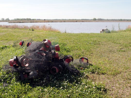 St landry parish to put extra patrol on crawfish ponds for Putting in a pond