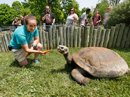 LAF Galapagos tortoise leaves Lafayette to find friend in Ohio