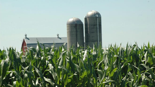 "Looking at corn and soybean margins for this year, Paul Mitchell said the statistics, averages and production ""guesstimates"" show that corn will be produced at negative 87 cents per bushel."