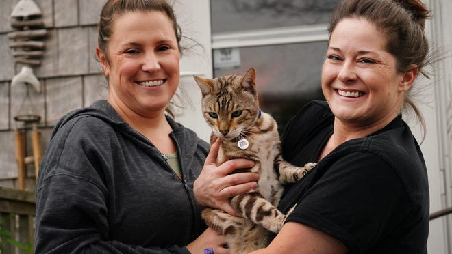 After two years missing, Coconuts the Bengal cat has returned home to Hampton with his owners Kerri Waters, left, and Holly Testerman.
