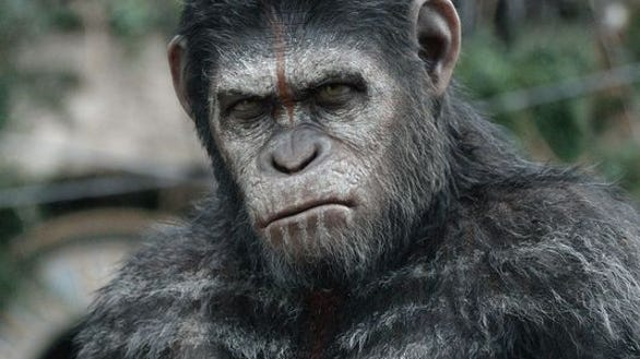 1398377572000-USL-PLANET-OF-APES-09s