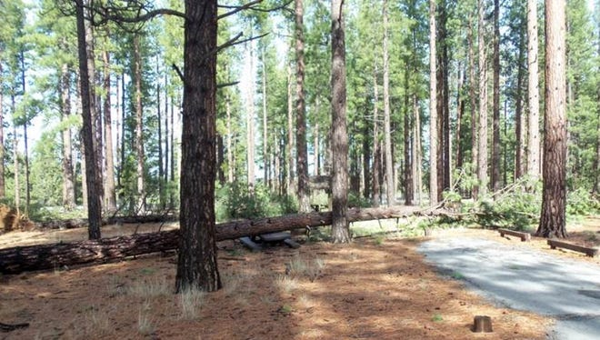 A look at the Eagle campground at Lassen National Forest