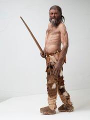 Reconstruction of Otzi, the iceman.
