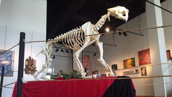 This replica of a Tyrannosaurus rex will be on display.