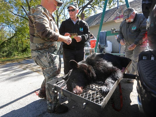 NJ bear hunt