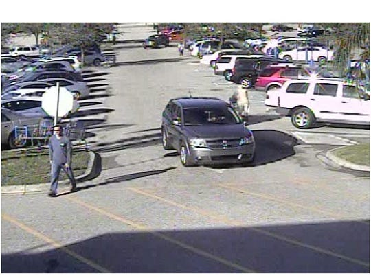 The suspect was photographed leaving the Walmart in the silver SUV.