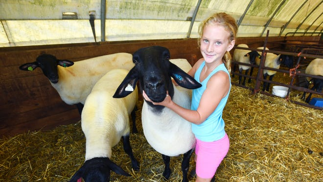 Kelcie Hopper and her Suffolk ewe, Breezie, won the grand champion ewe at the Ohio State Fair in the junior division. Kelcie plans to show her ewe at the Muskingum and Coshocton county fairs.