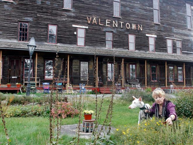 Kathryn White, president of the Victor Historical Society, with her Ibizan hound, Woobie, works on the Valentown Hall gardens in Victor.