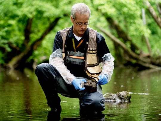 Scott Brooks, Distinguished R&D Scientist in the Environmental Sciences Division, removes from algae to study from a rock in a contaminated creek inside the Oak Ridge Wildlife Management Area in Oak Ridge, Tennessee on Wednesday, May 16, 2018.