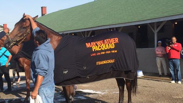 Itsaknockout donned his Mayweather-Pacquiao blanket after Friday's workout at Churchill Downs.