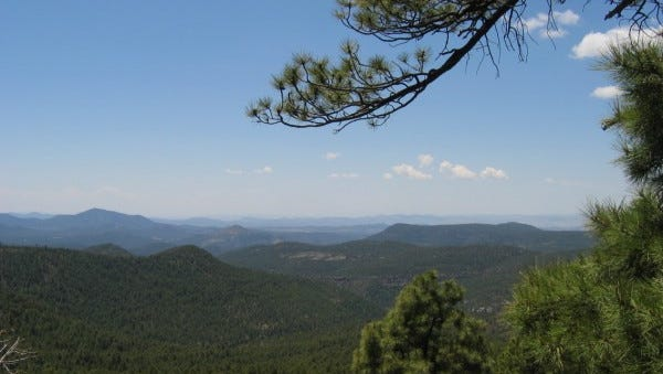 The Silver City Ranger District of the Gila National Forest is seeking public input on a proposal to reroute and relocate nine segments of the Continental Divide National Scenic Trail for approximately 19 miles and improve four trailheads.