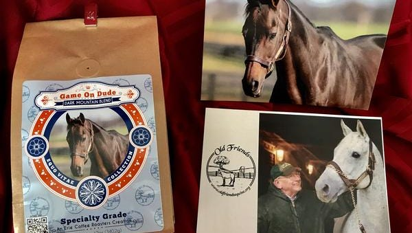 Game on Dude part of the Equo Vitae Collection, a new initiative designed to support rescued and retired horses.
