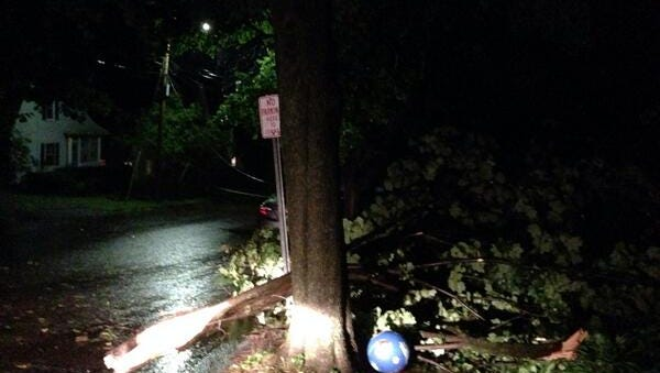 A tree is down on Howard Street near intersection with South Willard Street in Burlington Tuesday evening.