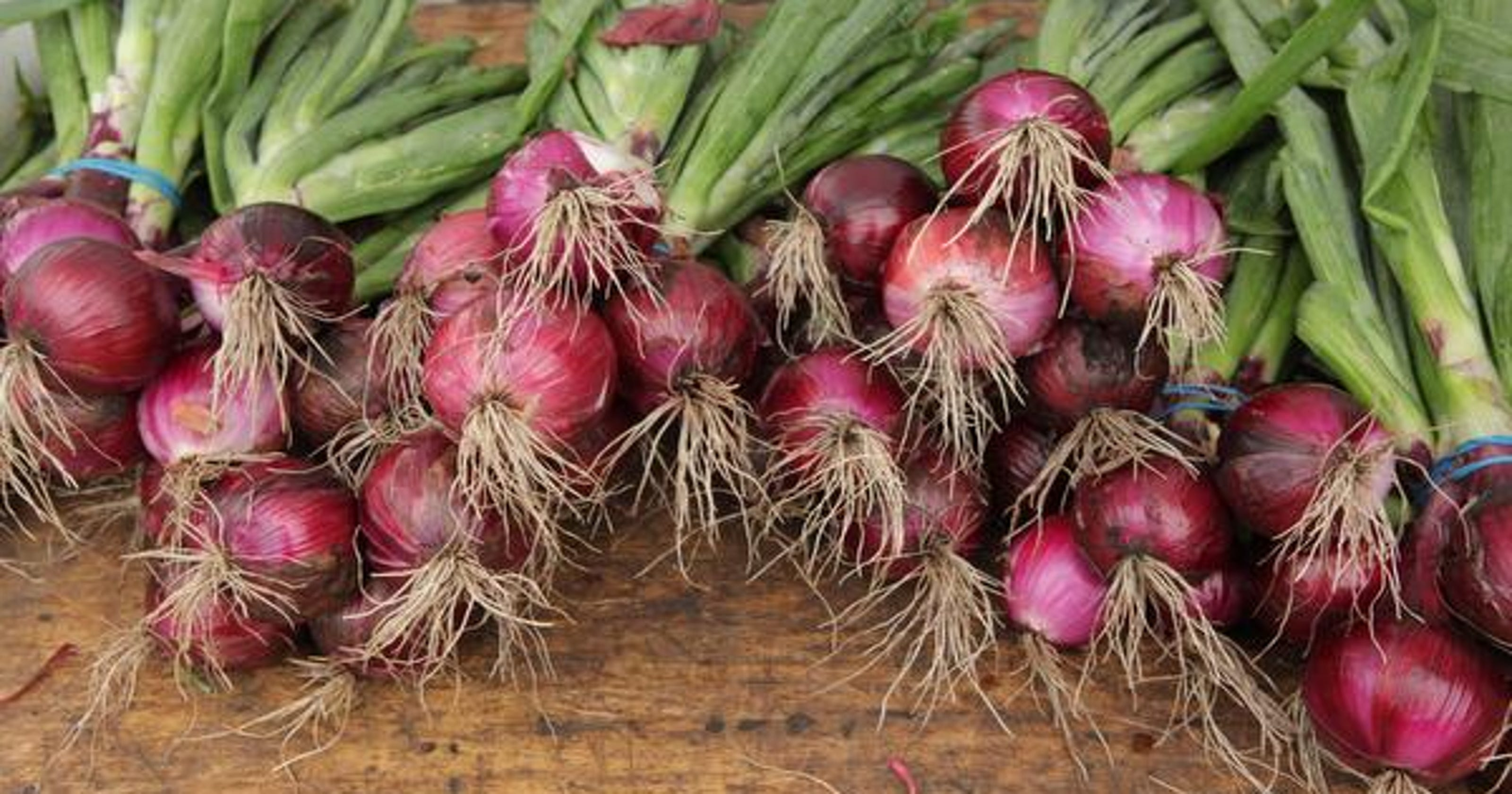 Farmers markets list: Westchester and Rockland