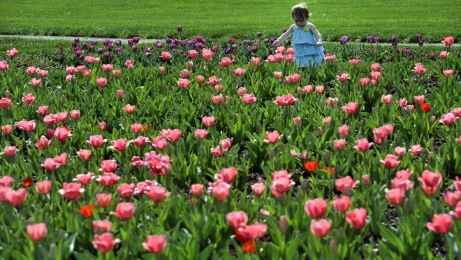 Biltmore's flowers are a big draw every spring.