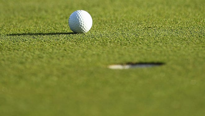 This is a file photo of a golf ball on the green.