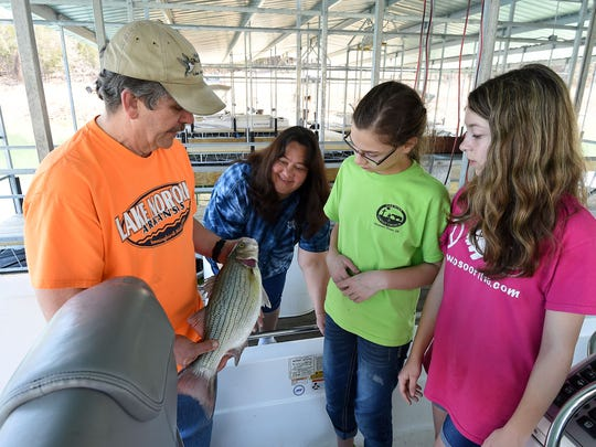 Lou Gabric, from left, owner of Hummingbird Hideaway Resort on Nofork Lake, shows guests Cheryl Hoagn, Josi Kelly and Cheyenne Hogan a hybrid striper on Wednesday. Gabric, who is a member of the Norfork Lake Chamber of Commerce, said the group's website and marketing efforts have made a positive impact on his business.