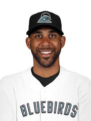 David Price is a member of the Nashville Bluebirds,