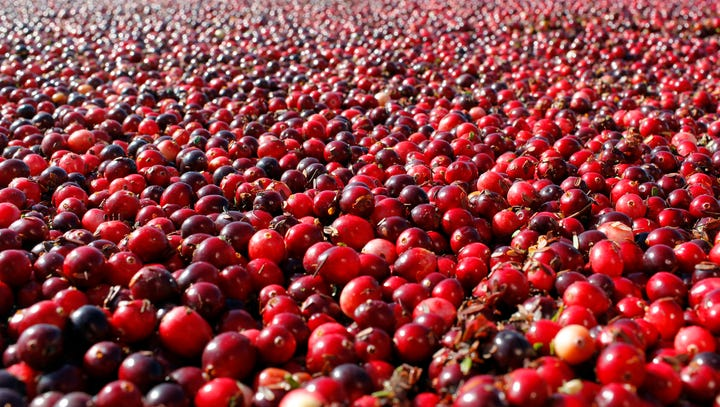 FILE - This Thursday Oct. 11, 2012 photo shows cranberries