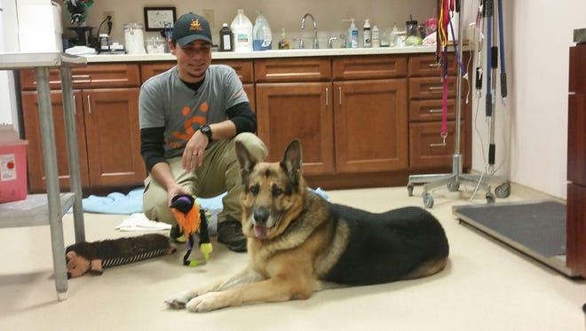 Best Friends Animal Society representative John Garcia kneels with Bela prior to departing for a 30-hour drive to the Utah animal sanctuary where the German shepherd will live.