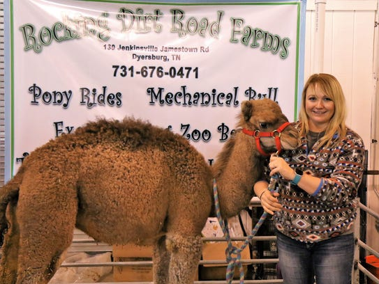 Attendees had a chance to pet a small camel from Rocking