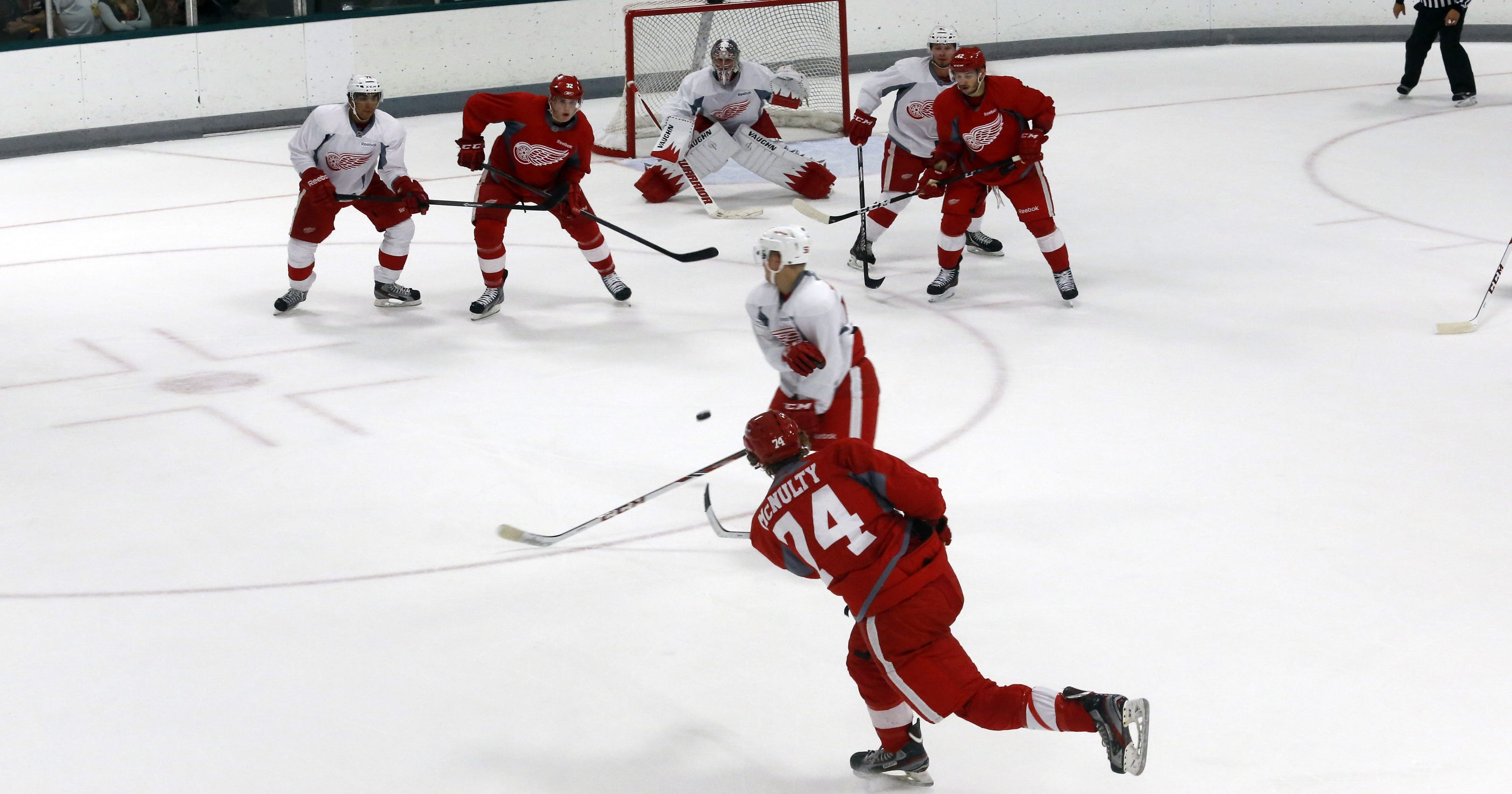 ff2ddb71542 Detroit Red Wings name trophy after late CapGeek founder