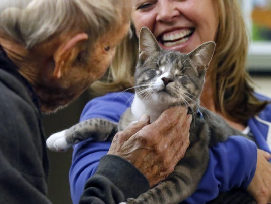 Blind cat captures hearts, leaves behind smiles