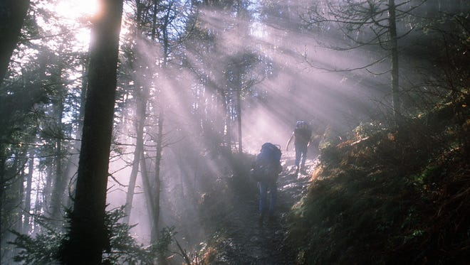 Hikers climb through morning fog on the Alum Cave Bluff Trail in the Great Smoky Mountains National Park. News-Sentinel photo by Paul Efird.